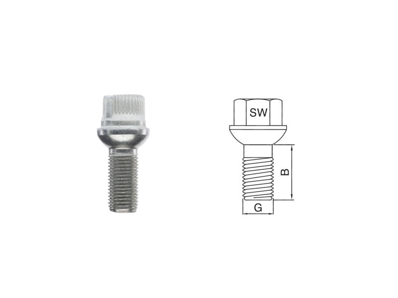 Blocage de roue rondelle conique (4 pcs) | raidhp