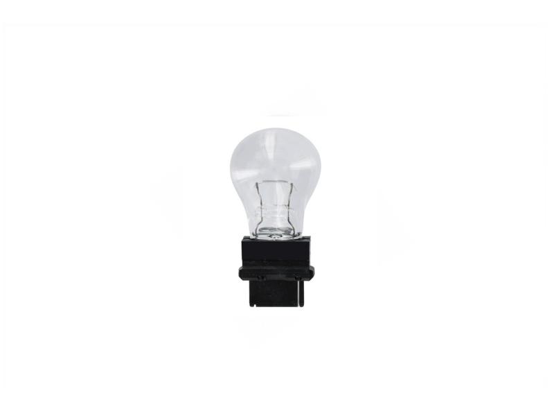 Ampoule [12 V] 27 watts (1 pièce)   SPAHN GLÜHLAMPEN